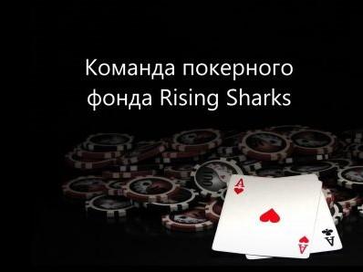 fond-rising-sharks